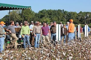 Field Day guests at Cotton Tour